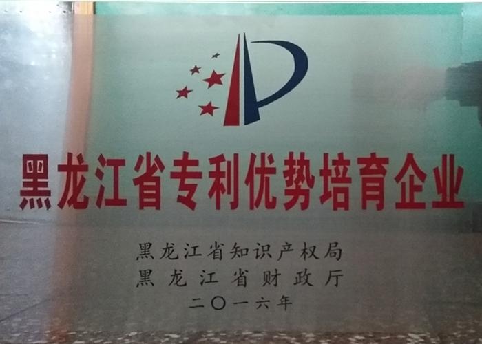 2016年黑龙江省专利优势培育企业